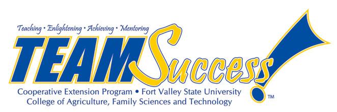Team Success Logo