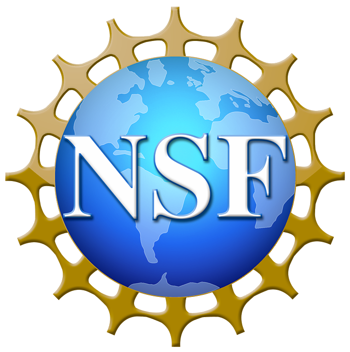 National Science Foundation icon