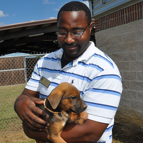 An FVSU vet tech student takes care of a puppy.