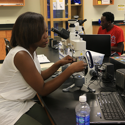 Biology research summer experience.