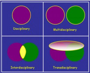 Image From http://www.hent.org/transdisciplinary.htm