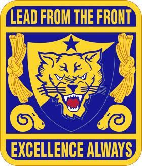 Wildcat Battalion patch