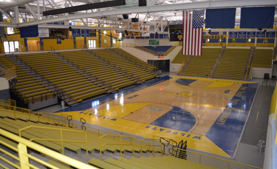 Wildcat Arena in the Health and Physical Education Complex